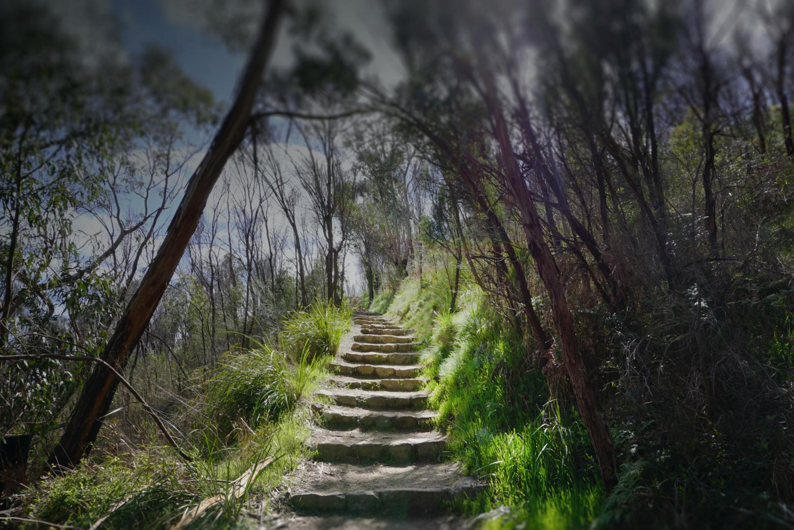 Arthurs Seat Steps walk